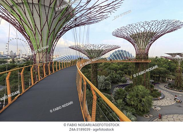 Singapore, Singapore - October 16, 2018: Tourists walking in the Supetree Grove area at the Gardens by the Bay in Singapore