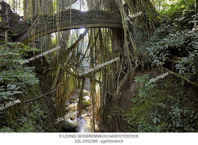 Carved stone bridge with overgrowing trees in the Sacred Monkey Forest Sanctuary. Ubud, Bali, Indonesia