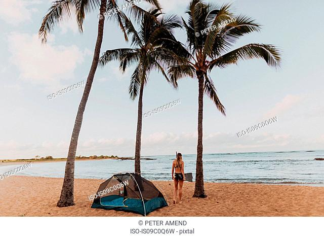 Scuba diver by tent on sandy beach, Property Released (PR)inceville, Hawaii, US