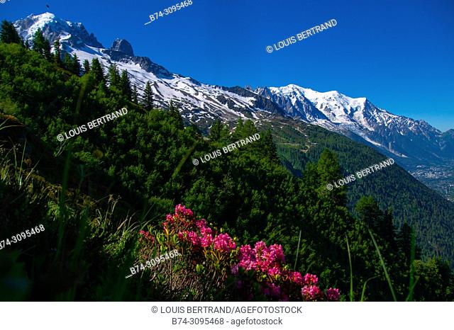 landscape of the Alps in France Haute Savoie