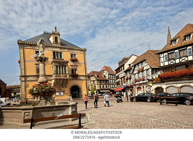 France,Bas Rhin,Obernai,market square,the Sainte Odile fountain,the City Hall