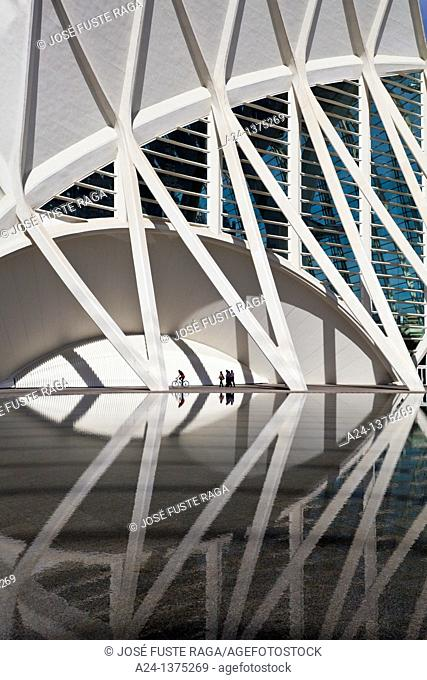Spain, Valencia City, The City of Arts and Science built by Calatrava