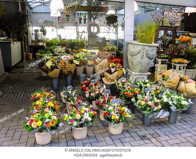 Amsterdam Open Market with Flowers stalls, Amsterdam, Netherlands, Holland, Europe