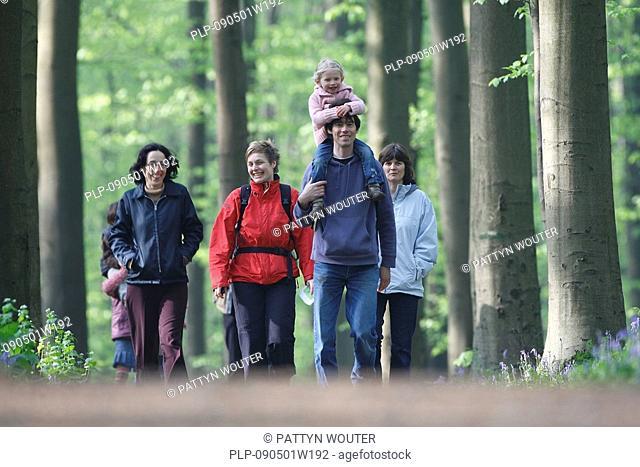 Walkers among Bluebells Endymion nonscriptus in beech forest, Hallerbos, Belgium
