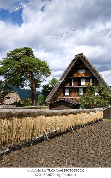 Traditional thatched roof building in Shirakawa go Unesco World Heritage Site Japan