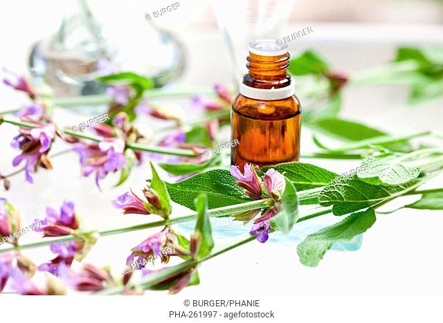 Clary sage essential oil