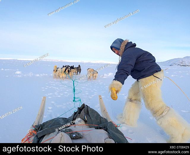 Jumping on the sledge. Inuit hunter wearing traditional trousers and boots made from polar bear fur on the sea ice of the Melville Bay near Kullorsuaq in North...