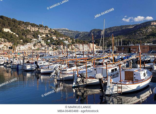 Fishing boats in the harbour, Port de Soller, Majorca, the Balearic Islands, Spain