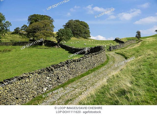 Farm track through fields in the English lake district