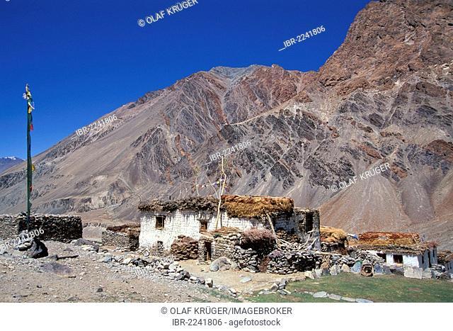 Traditional Tibetan houses with prayer flags, Tetha, Zanskar, Ladakh, Jammu and Kashmir, North India, India, Himalayas, Asia