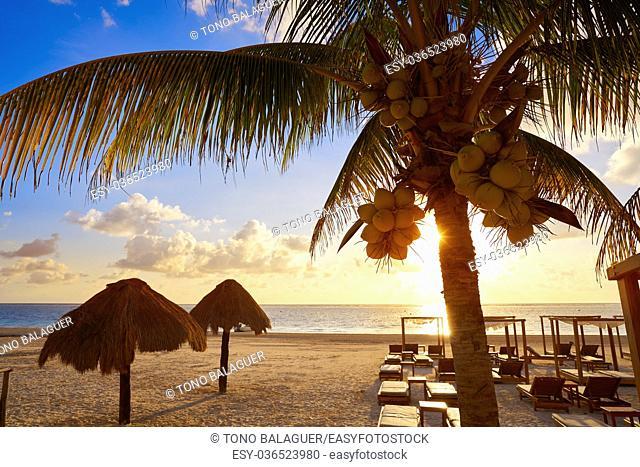 Riviera Maya sunrise beach pal trees at Mayan Mexico