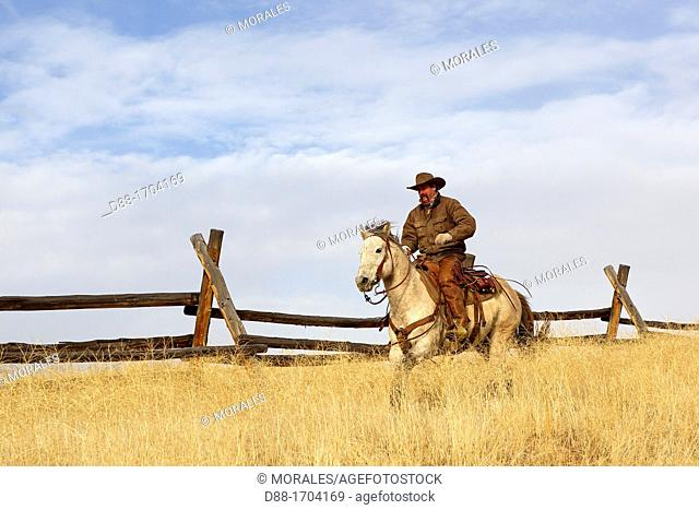 United States , Wyoming , Shell, The Hideout Guest Ranch , cow-boy , Boots