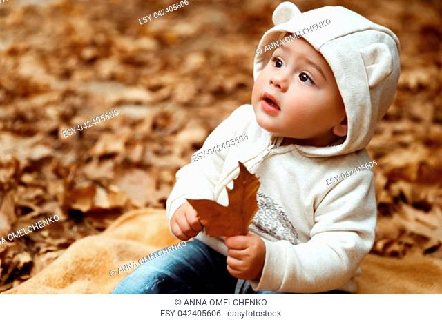Sweet baby in autumn forest, cute little boy sitting on the dry tree leaves in the park, enjoying autumnal holidays, happy carefree childhood