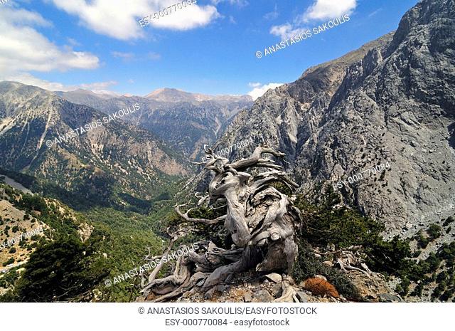 Samaria, Lefka Ori, Crete