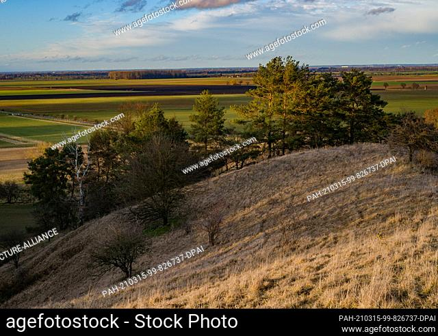 13 March 2021, Brandenburg, Mallnow: View from the slopes at the edge of the Oderbruch, a region in the east of the state of Brandenburg