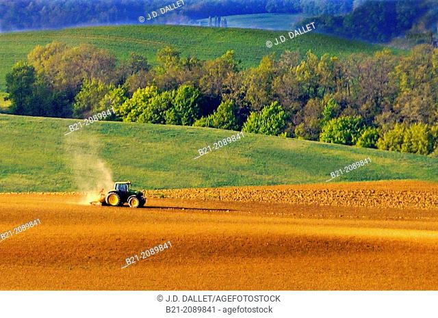 France. Midi Pyrenées. Gers.  Corn sowing near Rozès. the corn used to feed ands to make the famed Foie Gras