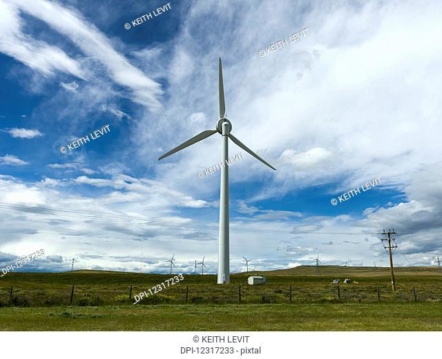Wind turbines on fields under a blue sky, with cloud; Pincher Creek, Alberta, Canada