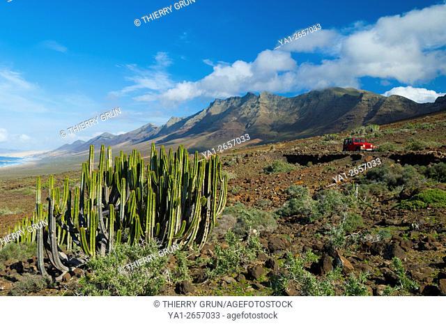 Spain, Canary islands, Fuerteventura, Jandia peninsula, north coast of natural park
