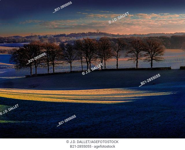 France. Auvergne, Cantal, winter, near Boisset