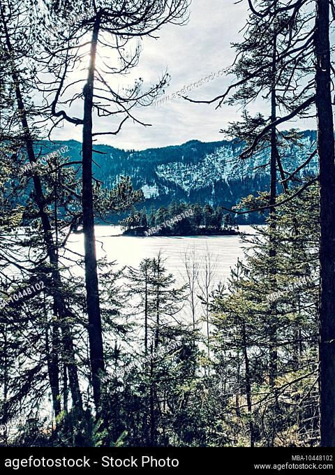 View of a small tree-covered island in the frozen Eibsee, Grainau, Bavaria