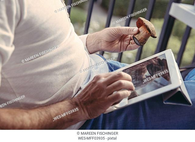 Man using tablet for researching informations about collected mushrooms, partial view