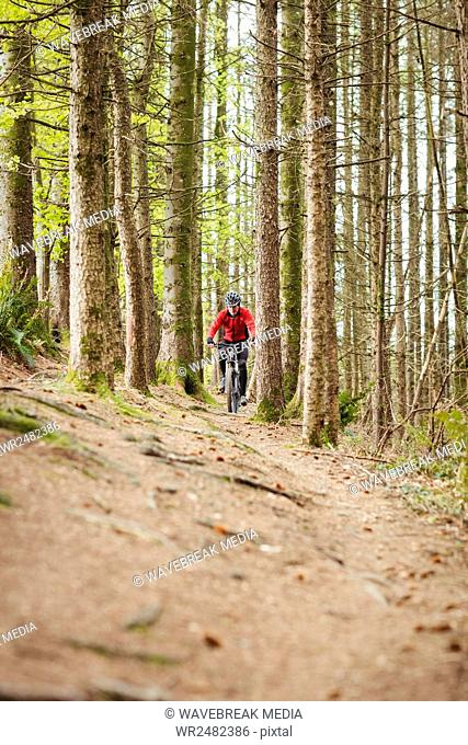 Mountain biker riding on dirt road in forest