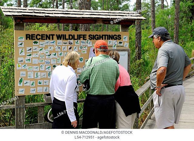 Corckscrew Swamp Sanctuary Naples Florida