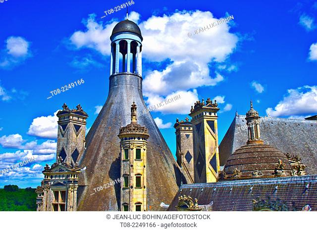 france, loire castles : chambord castle, outside, top