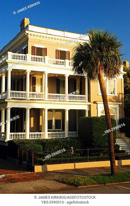 Porch and Palmetto, Charleston, South Carolina