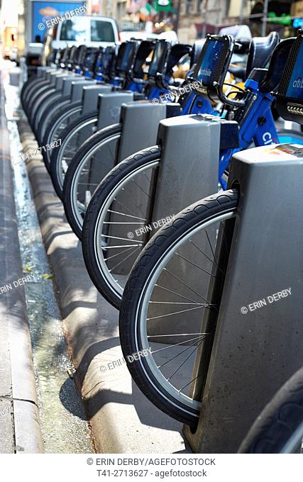 A row of Citibikes