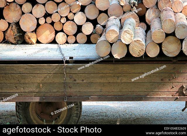 Mit Holz beladener Traktoranhänger