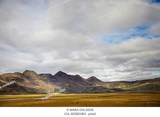 Distant landscape of valley and mountains, Iceland