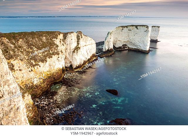 View towards Old Harry Rocks, Studland, Dorset, England, UK, Europe