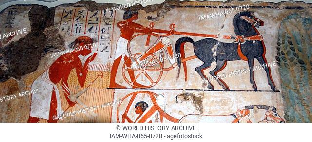 Fresco from the tomb of Nebamun, shows Nebamun watching agricultural activities. The painting shows a man, probably an official under Nebamun's supervision