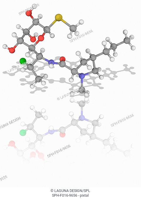 Clindamycin. Molecular model of the antibiotic drug clindamycin (C18.H33.Cl.N2.O5.S), used to treat anaerobic infections