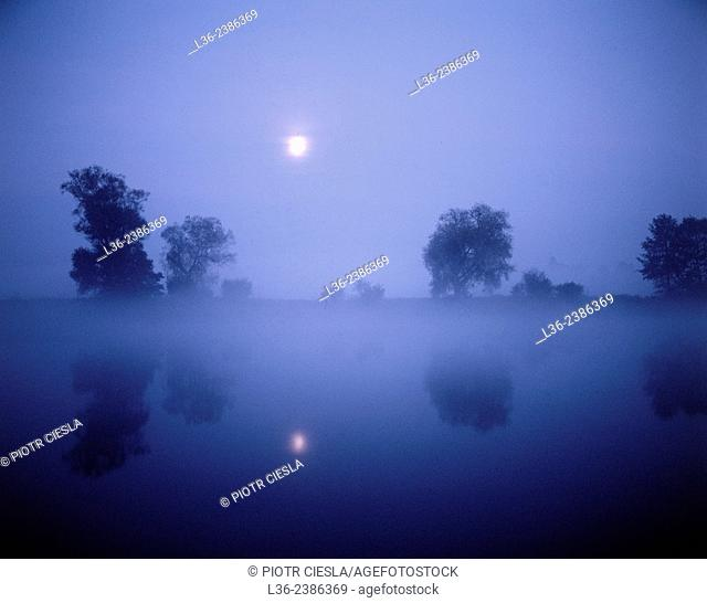 Moonrise by Bug river. Podlasie region. Poland