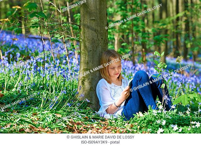 Girl leaning against tree sketching in bluebell forest, Hallerbos, Brussels, Belgium
