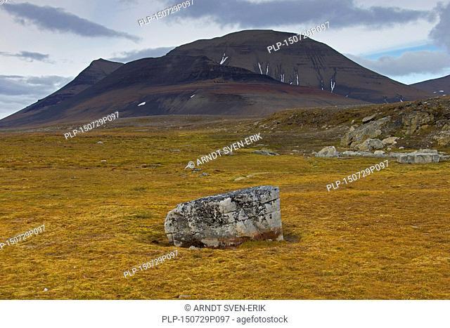 Mountains along the coast of Boltodden, Kvalvagen, Svalbard / Spitsbergen, Norway