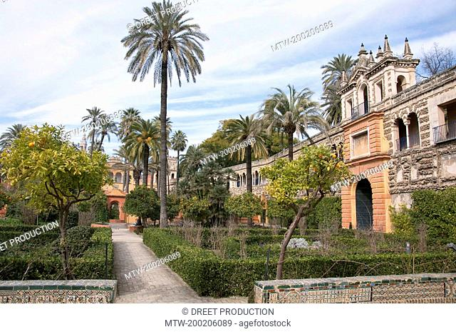View of Alcazar palace, Sevilla, Andalusia, Spain