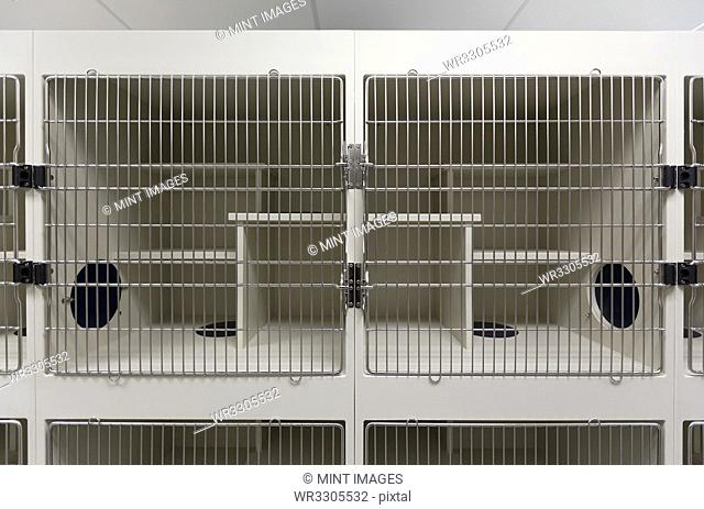 Metal doors of empty cages in animal shelter