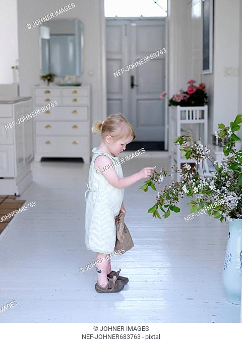 A girl standing in a hall picking flowers, Skane, Sweden