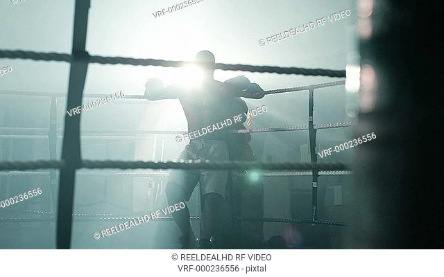 Male Boxer leaps up from the corner of the Ring and begins preparing himslef for the fight