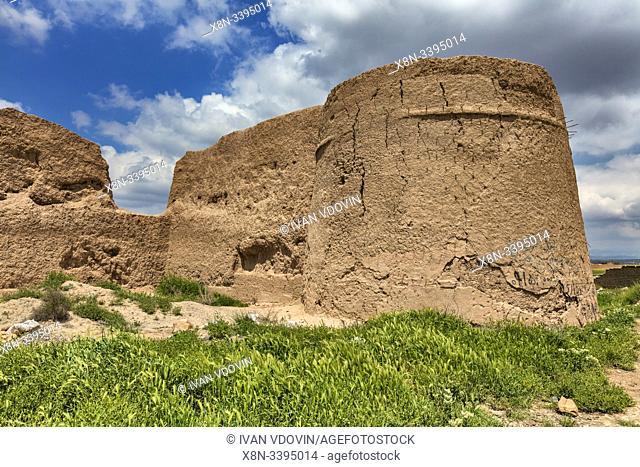 Ruins of ancient city of Tus, Khorasan Razavi Province, Iran