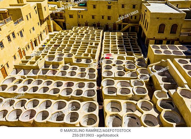 The tannery of Fes, restored and ready for the royal inauguration. Fes, Morocco, North Africa