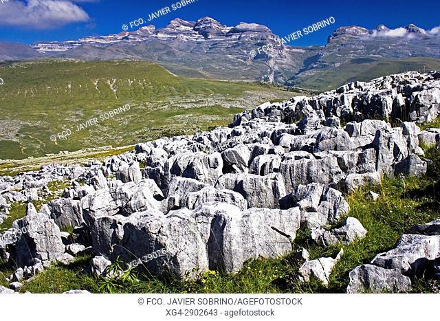 Lapiaz en el Valle de Añisclo. Al fondo, el macizo de Monte Perdido. Sobrarbe. Pirineo Aragonés. Provincia de Huesca. España. Europa
