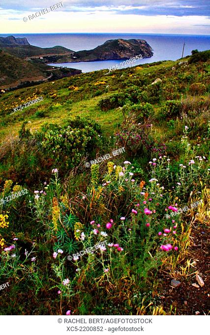 Natural Parc of Cap de Creus, Roses, Girona, Catalonia