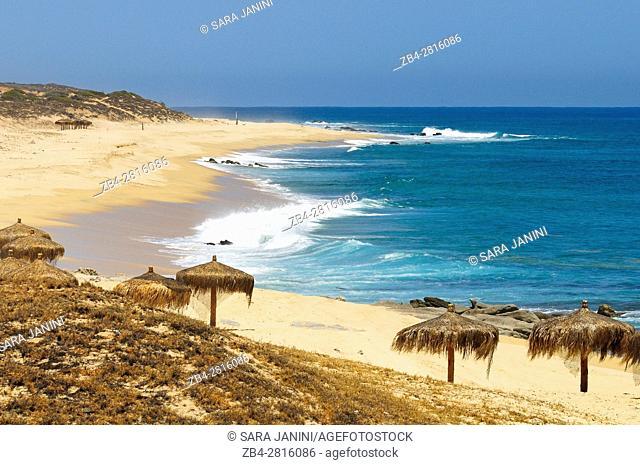 Cabo Pulmo National Marine park, Gulf of California, Baja California, Mexico, North America