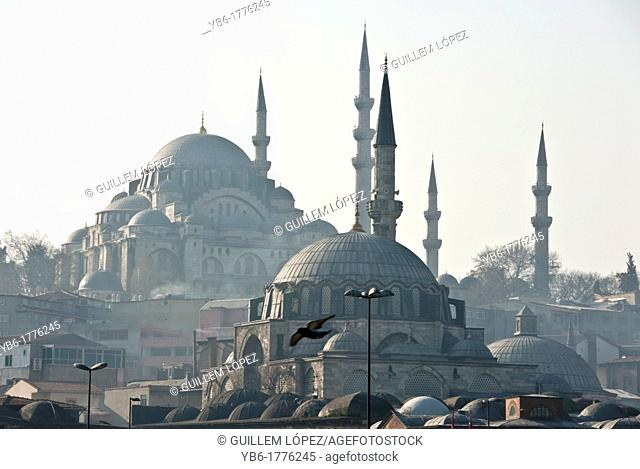 View of the Yeni and Suleymaniye Mosques from the Galata bridge, Istanbul, Turkey