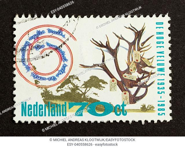 HOLLAND - CIRCA 1980: Stamp printed in the Netherlands shows a tree in the national park 'de Hoge Veluwe', circa 1980