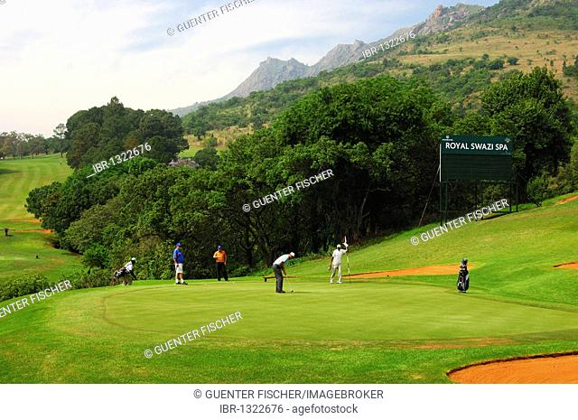 Putting green on the 18-hole golf course at the Royal Swazi Spa Valley Resort, Ezulwini, Swaziland, Africa
